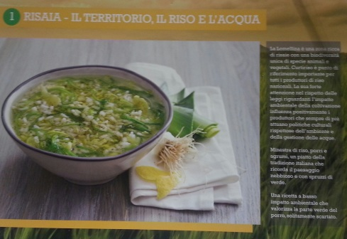 percorsi green risaia
