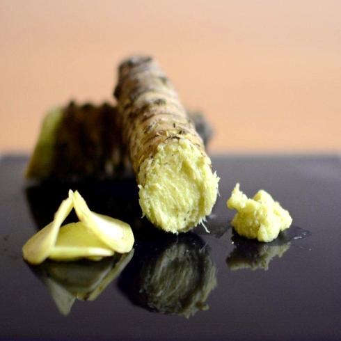 Radice fresca di wasabi